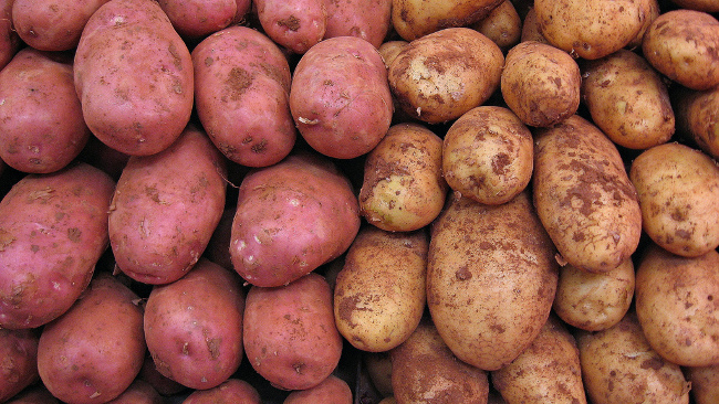 Potatoes, June 2011 by 16:9 Clue